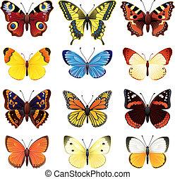 πεταλούδα , θέτω