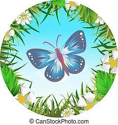 πεταλούδα , καθάρισμα , 2