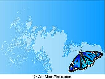 πεταλούδα , φόντο , αφαιρώ