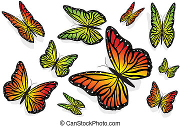πεταλούδα , 2