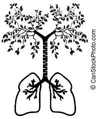 πνεύμονας , δέντρο