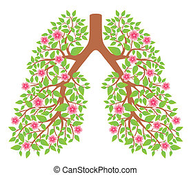 πνεύμονεs , υγιεινός