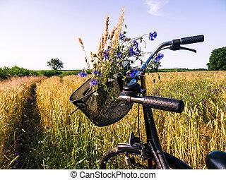 ποδήλατο , μέσα , τοπίο