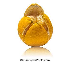 πορτοκάλι , άσπρο , απομονωμένος , φόντο