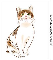πορτραίτο , γάτα , παρδαλή ραβδωτή γάτα , πιπερόριζα