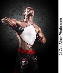 πορτραίτο , boxer., αρσενικό , creative.