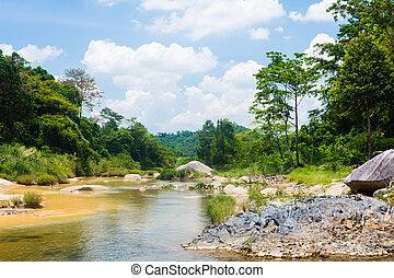ποτάμι , ζούγκλα