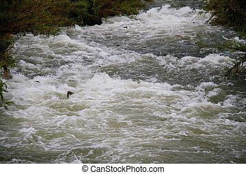 ποτάμι , πάνω , ρεύση , βότσαλο , βράχος , μεγάλος , αγίνωτος φόντο , βράχοs , αντάρα , γκρεμόs