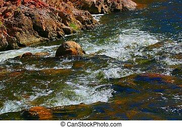 ποταμάκι , 4478