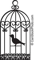 πουλί αναβατήρας