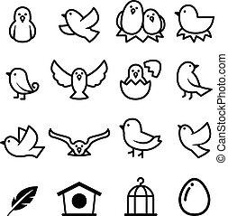 πουλί , εικόνα