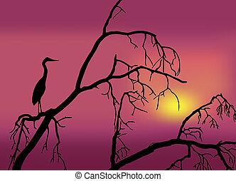 πουλί , μέσα , ένα , δέντρο