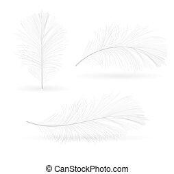 πουλί πούπουλο , χέρι , μετοχή του draw , μικροβιοφορέας , εικόνα