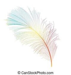 πουλί πούπουλο , χέρι , μετοχή του draw , φόντο , μικροβιοφορέας , εικόνα