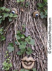 πράσινο , άντραs , δέντρο , γενική ιδέα