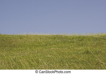 πράσινο , γη , γαλάζιος ουρανός