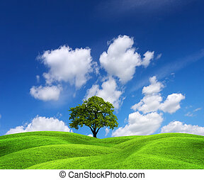 πράσινο , είδος γραφική εξοχική έκταση