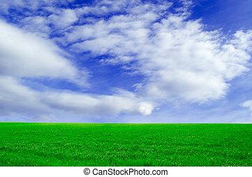 πράσινο , field.