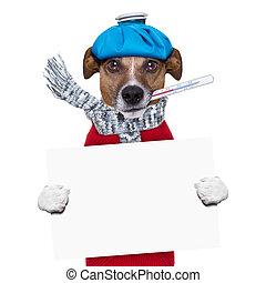 πυρετόs , σκύλοs , άρρωστος