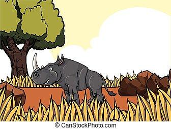 ρινόκερος , savanah, κυνηγετική εκδρομή εν αφρική