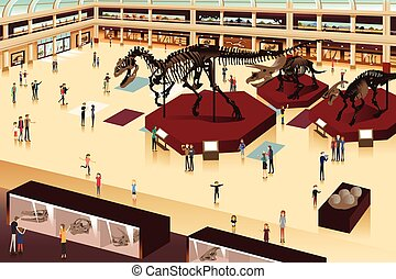 σκηνή , εσωτερικός , ένα , μουσείο φυσικήs ιστορίαs