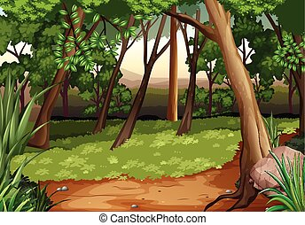 σκηνή , με , αγχόνη και αγρός , μέσα , δάσοs