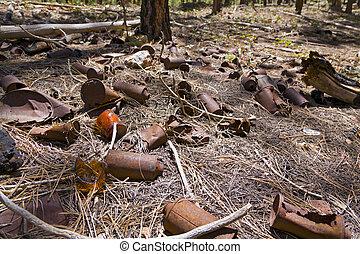 σκουπίδια , δάσοs
