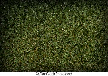 σκουριασμένος , πράσινο