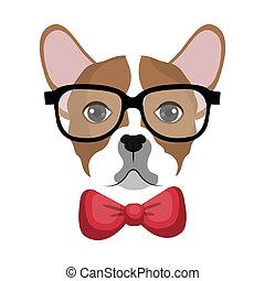 σκύλος μπουλντώκ , ανατρέφω , σχεδιάζω