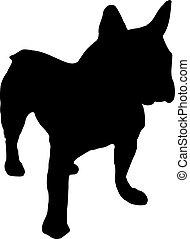 σκύλος μπουλντώκ , γαλλίδα