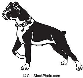 σκύλοs , είδος σκύλου