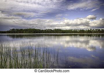 σουηδικά , τοπίο