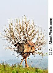 σπίτι , δέντρο