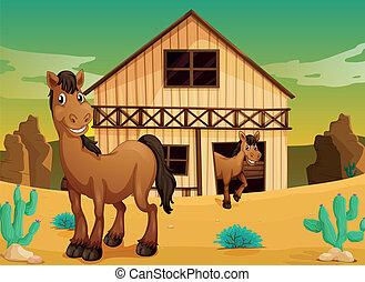 σπίτι , και , άλογα