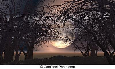 σπούκι , τοπίο , δέντρα , 3d