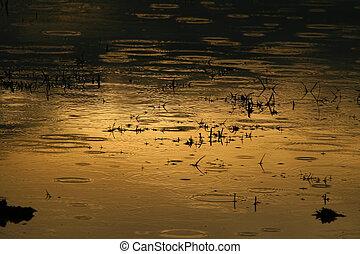 στάλα , λίμνη
