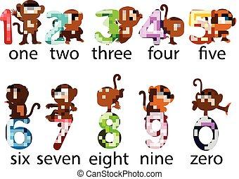 συλλογή , μαϊμού , αριθμόs , διατυπώνω , διαφορετικός , δίπλα σε