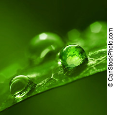 σφαίρα , μέσα , διαύγεια αφήνω να πέσει , πράσινο , περιβάλλον , αφαιρώ