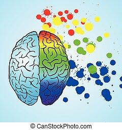 σωστό , έγχρωμος , concept., εγκέφαλοs , brain., αριστερά