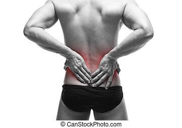σώμα , backache., αρσενικό , μυώδης , άντραs