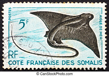 ταχυδρομικά τέλη , αετός , γραμματόσημο , fish, 1927 , ακτή , somali , myliobatidae, ακτίνα