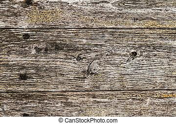 τοίχοs , ξύλινος