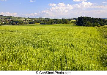 τοπίο , γεωργία