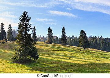 τοπίο , με , βουνά , και , δέντρα