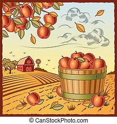 τοπίο , με , μήλο , συγκομιδή