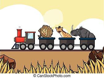 τρένο , γύρος , savanah, ζώο , κυνηγετική εκδρομή εν αφρική