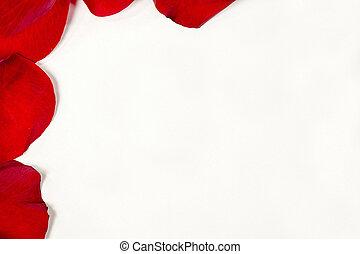 τριαντάφυλλο , σύνορο , κόκκινο , πέταλο άνθους
