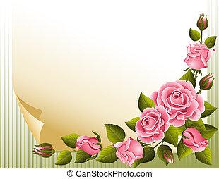 τριαντάφυλλο , φόντο