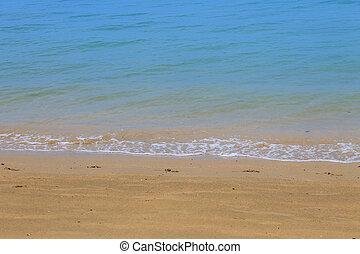 τροπικός , άμμος ακρογιαλιά
