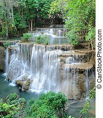 τροπικός , καταρράχτης , rainforest , σιάμ